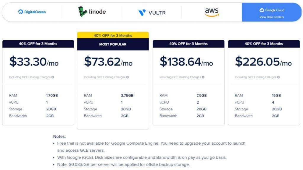 obraz przedstawia ofertę cenową hostingu cloudways na serwerach firmy Google Cloud