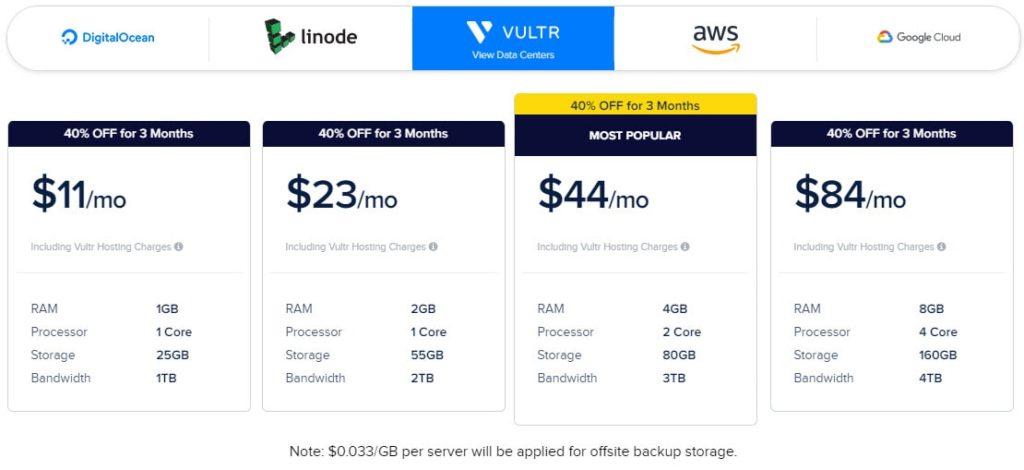 obraz przedstawia ofertę cenową hostingu cloudways na serwerach firmy vultr