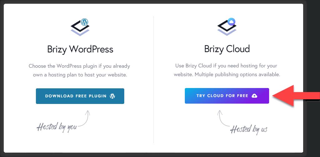 Zdjęcie pokazuje pop-up z opcją wyboru. Wybieramy tutaj Brizy Cloud, żeby stworzyć stronę internetową za darmo