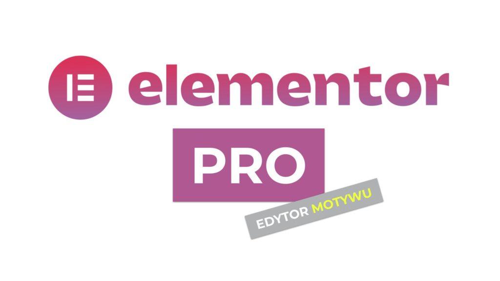 Elementor PRO edytor motywu WordPress